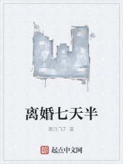 《离婚七天半》作者:潘乃飞7