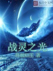 《战灵之光》作者:终极KO王