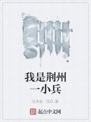 《我是荆州一小兵》作者:汪大东.QD