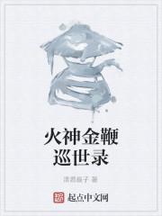《火神金鞭巡世录》作者:清源扇子