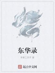 《东华录》作者:李家二尕子