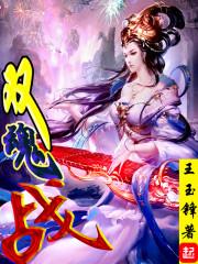 《双魂战》作者:王玉锋