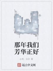 《那年我们芳华正好》作者:小禾.QD