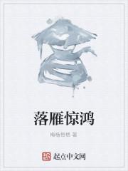 《落雁惊鸿》作者:梅杨梧楒