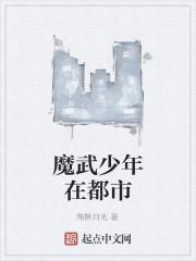 《魔武少年在都市》作者:陶醉月光
