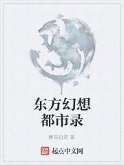 《东方幻想都市录》作者:博丽白灵