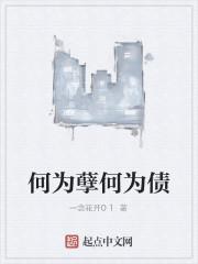 《何为孽何为债》作者:一念花开01
