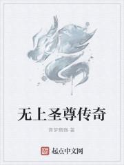 《无上圣尊传奇》作者:青梦情殇