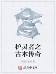 《护灵者之古木传奇》作者:冷雪轩冰