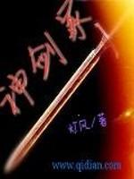 《神剑冢》作者:灯风