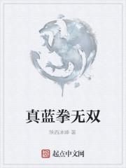 《真蓝拳无双》作者:陕西冰峰
