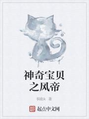 《神奇宝贝之风帝》作者:枫临k