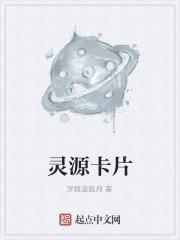 《灵源卡片》作者:浮殿凌宸月