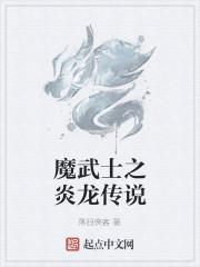 《魔武士之炎龙传说》作者:落日俠客