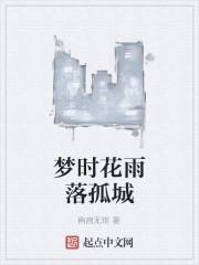 《梦时花雨落孤城》作者:南宫无错