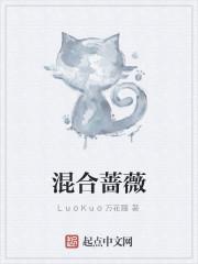 《混合蔷薇》作者:LuoKuo万花瞳