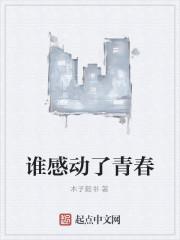 《谁感动了青春》作者:木子毅书