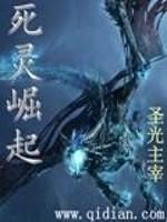 《死灵崛起》作者:圣光主宰