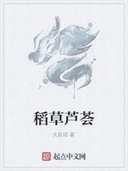 《稻草芦荟》作者:火星韬