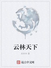《云林天下》作者:炎木林