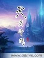 《天灵斗气》作者:唐小正