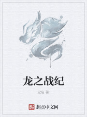 《龙之战纪》作者:宏名