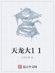 《天龙大11》作者:小妖钻疯