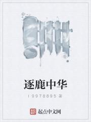 《逐鹿中华》作者:l9978895