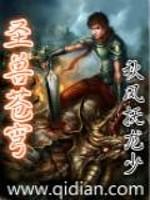 《圣兽苍穹》作者:秋风抚龙少