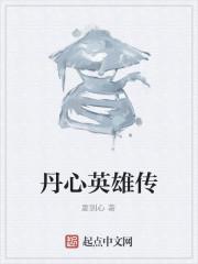 《丹心英雄传》作者:夏剑心