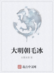 《大明朝毛冰》作者:白露未霜