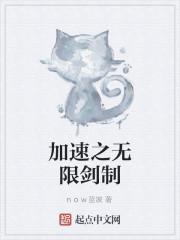 《加速之无限剑制》作者:now蓝波