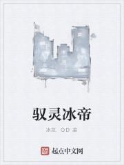 《驭灵冰帝》作者:冰菜.QD