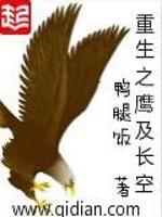 《重生之鹰及长空》作者:鸭腿饭