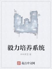 《毅力培养系统》作者:林林青玉