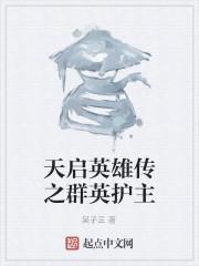 《天启英雄传之群英护主》作者:吴子三