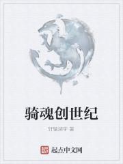 《骑魂创世纪》作者:轩辕涵宇