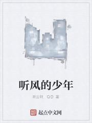 《听风的少年》作者:听云轩.QD