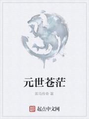 《元世苍茫》作者:黑马传奇