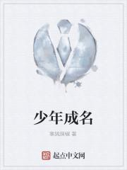 《少年成名》作者:寒风辣椒