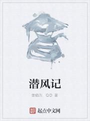 《潜风记》作者:壹佰万.QD