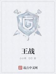 《王战》作者:小小修.QD