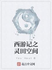 《西游记之灵田空间》作者:Yes`Heat