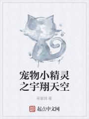 《宠物小精灵之宇翔天空》作者:萌璇玥