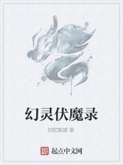 《幻灵伏魔录》作者:回忆取暖