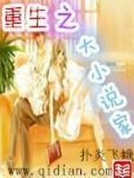 《重生之大小说家》作者:扑炎飞蛾