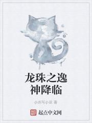 《龙珠之逸神降临》作者:小苏写小说
