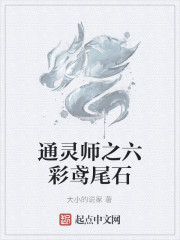《通灵师之六彩鸢尾石》作者:大小的说家