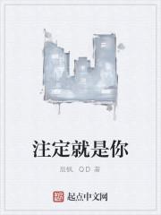 《注定就是你》作者:辰枫.QD