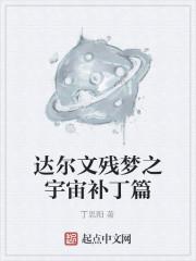《达尔文残梦之宇宙补丁篇》作者:丁思阳